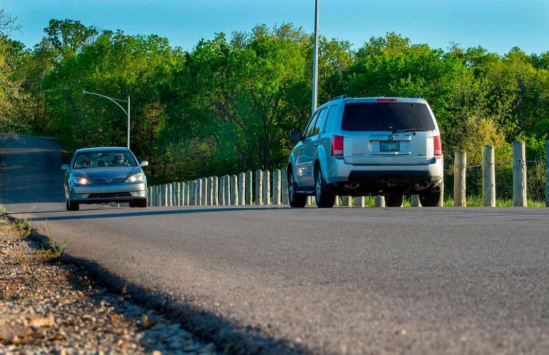 Melhores seguros para carros: Como escolher o seu